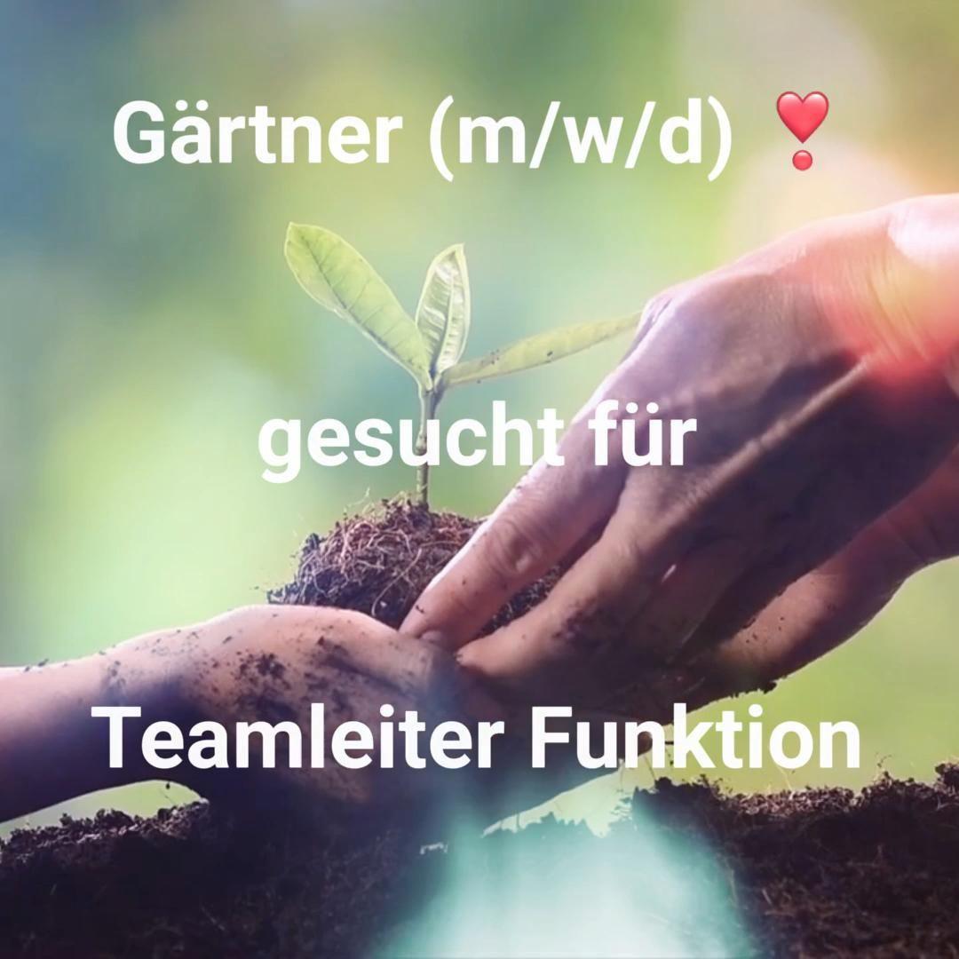 Gartner Gesucht M W D Video In 2020 Stellenangebot Teamleiter Job