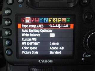 How to Setup Canon 7D to take HDR shots / Bracketed Exposure ~ Paint