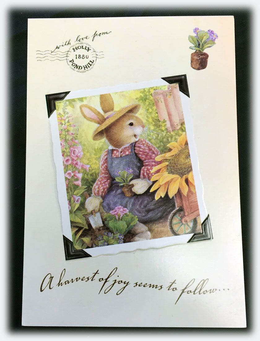 Vintage Sunrise Holly Pond Susan Wheeler Sticker Thoughts Of Someone