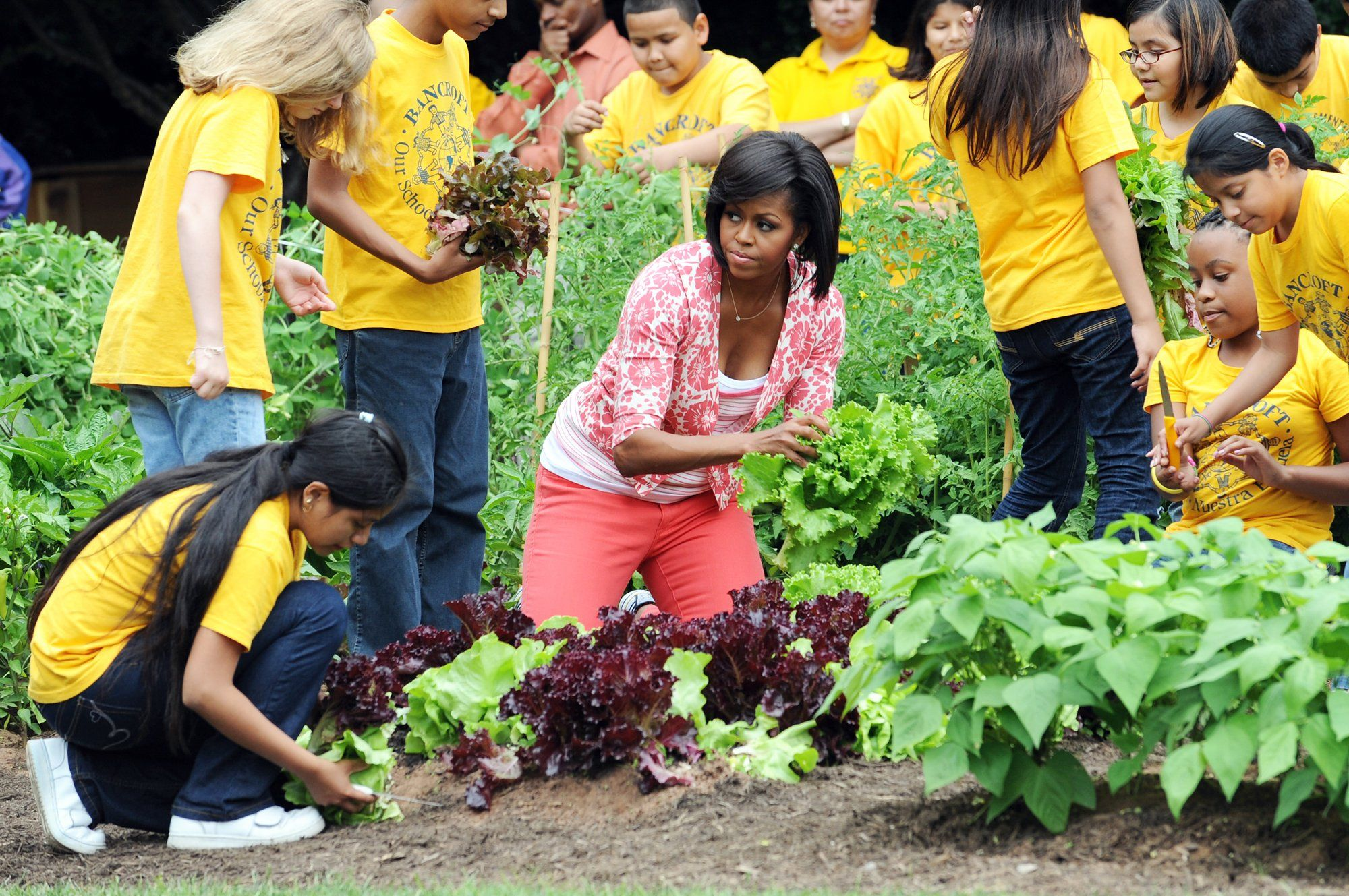 Картинки по запросу Michelle Obama's vegetable garden