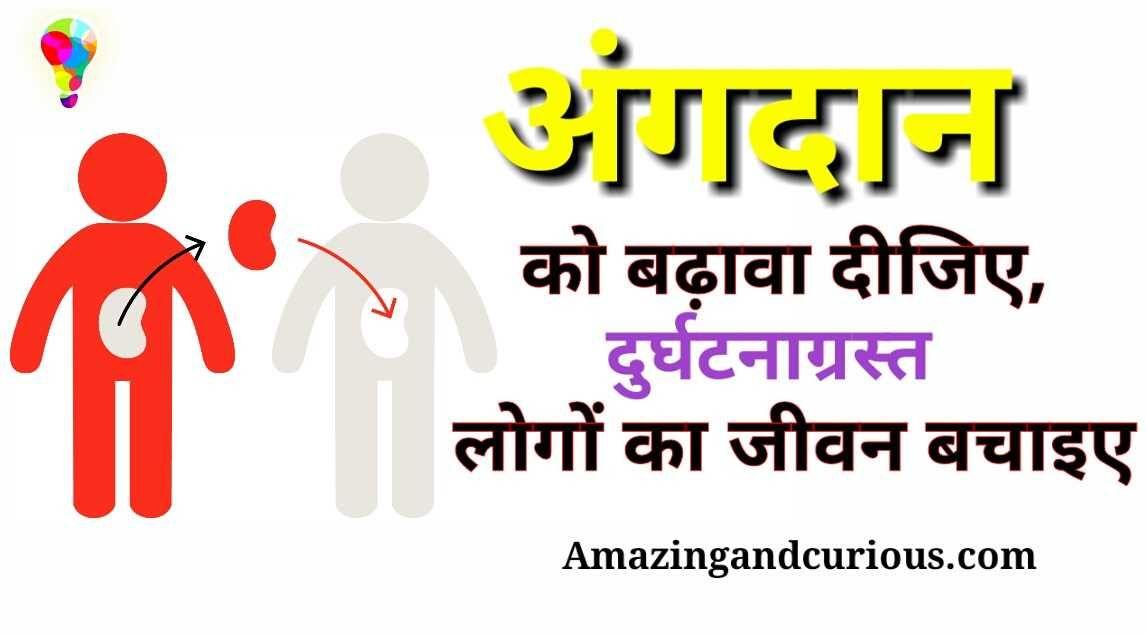 अ गद न Slogansinhindi Organdonation Organdonationslogans अ ग द न पर न र Organ Donation Slogans In Hindi Slogans On Organ Organ Donation Slogan Donate