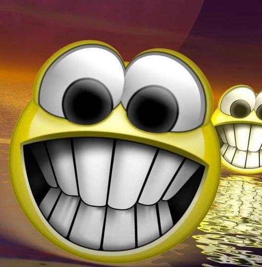 Litmus Litmus On The Wall Smiley Funny Smiley Funny Topics