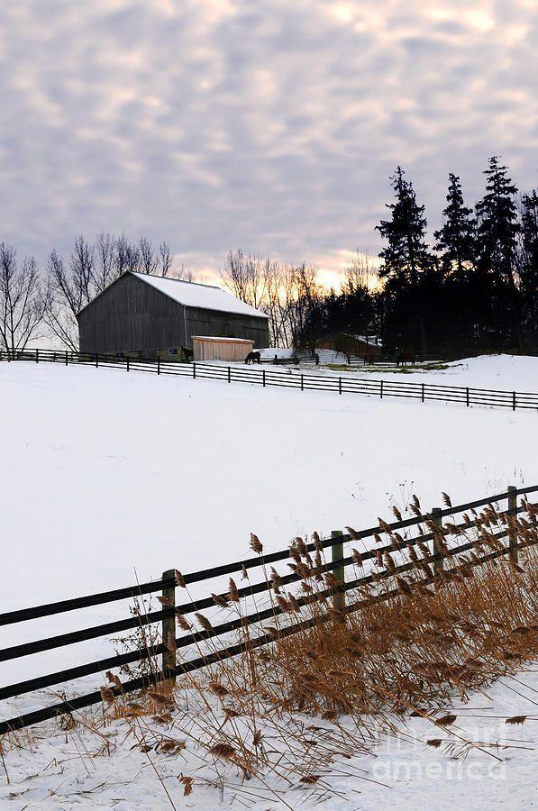 Rural Winter Landscape in 2020 Winter scenery, Winter