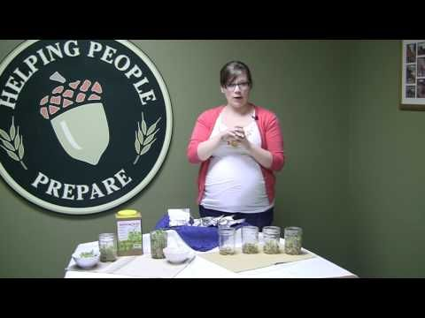 Organic Sprouting Seeds Combo