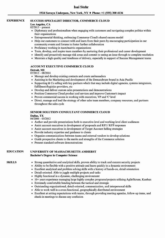9 Salesforce Administrator Resume Example Resume Template Free Templates Resume Examples Salesforce Administrator Resume Objective Statement Examples