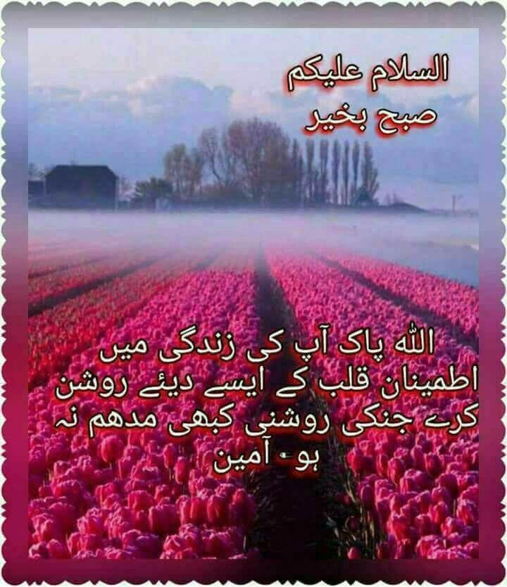 Pin by Sana Bano on Subah ka Salam   Morning quotes, Morning