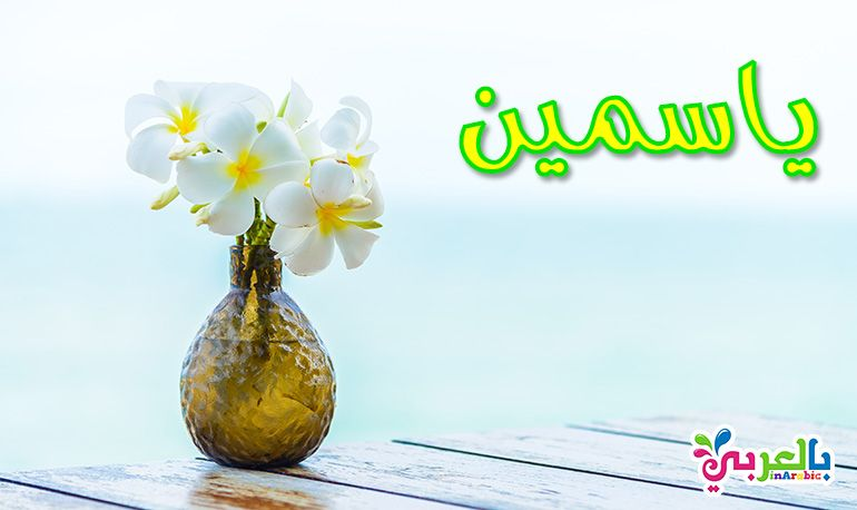 معنى اسم ياسمين Glass Vase Vase Decor