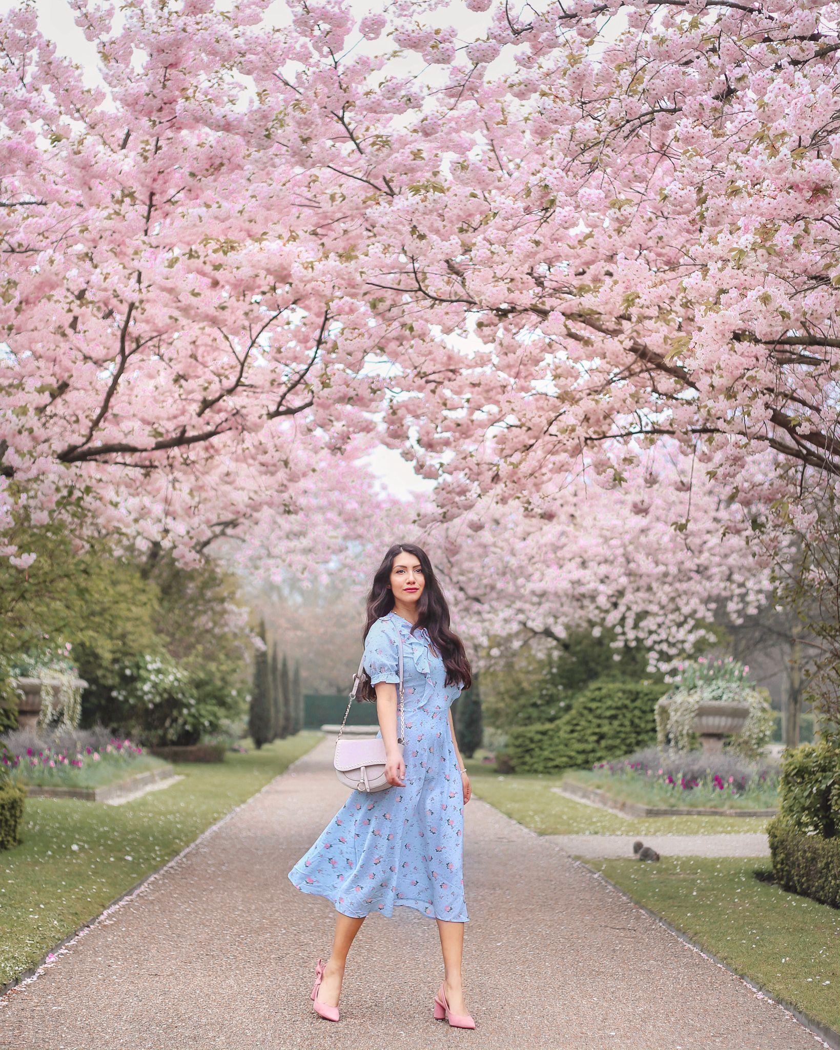 Cherry Blossom Inspired Wedding Ideas Cherry Blossom Wedding Wedding Themes Wedding