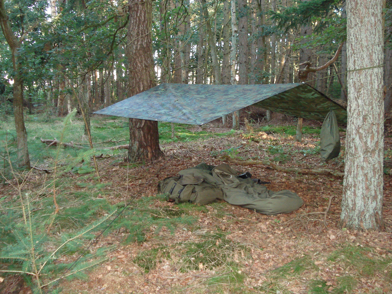 Park Art|My WordPress Blog_Where Do Deer Sleep When It Rains