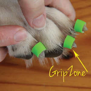 Grip Zone Dogs Dog Help Dog Toenails