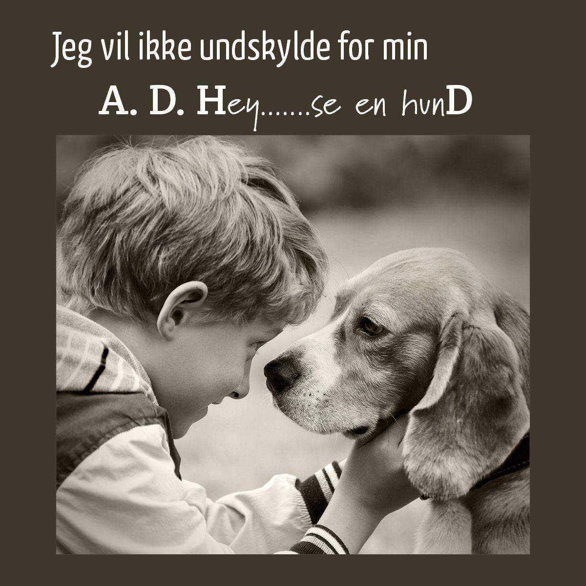 citater om hunde og mennesker Et citat der på en legende måde, viser en af de udfordringer, som  citater om hunde og mennesker