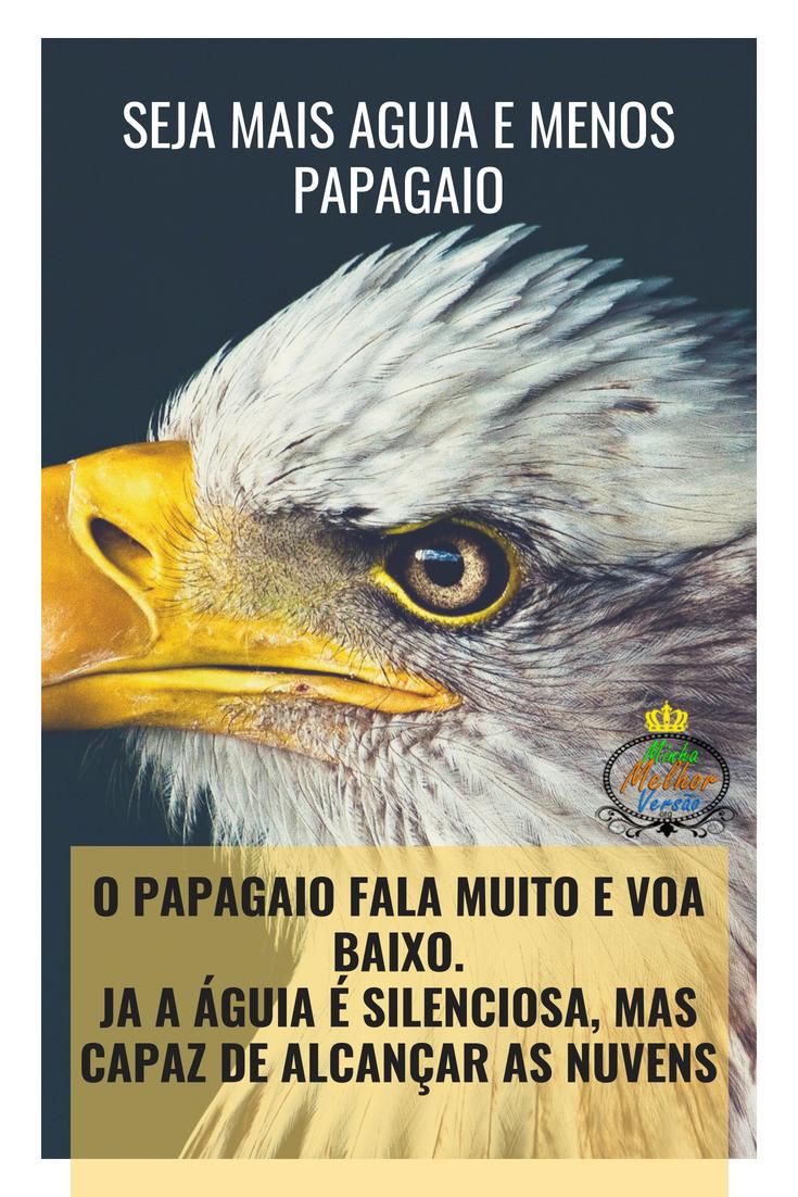 Seja Mais águia E Menos Papagaio O Papagaio Fala Muito E
