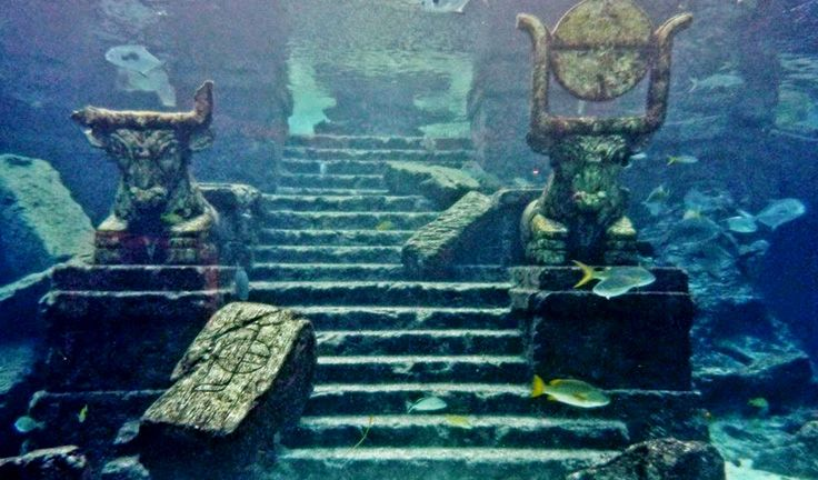 Image result for dwarka underwater museum