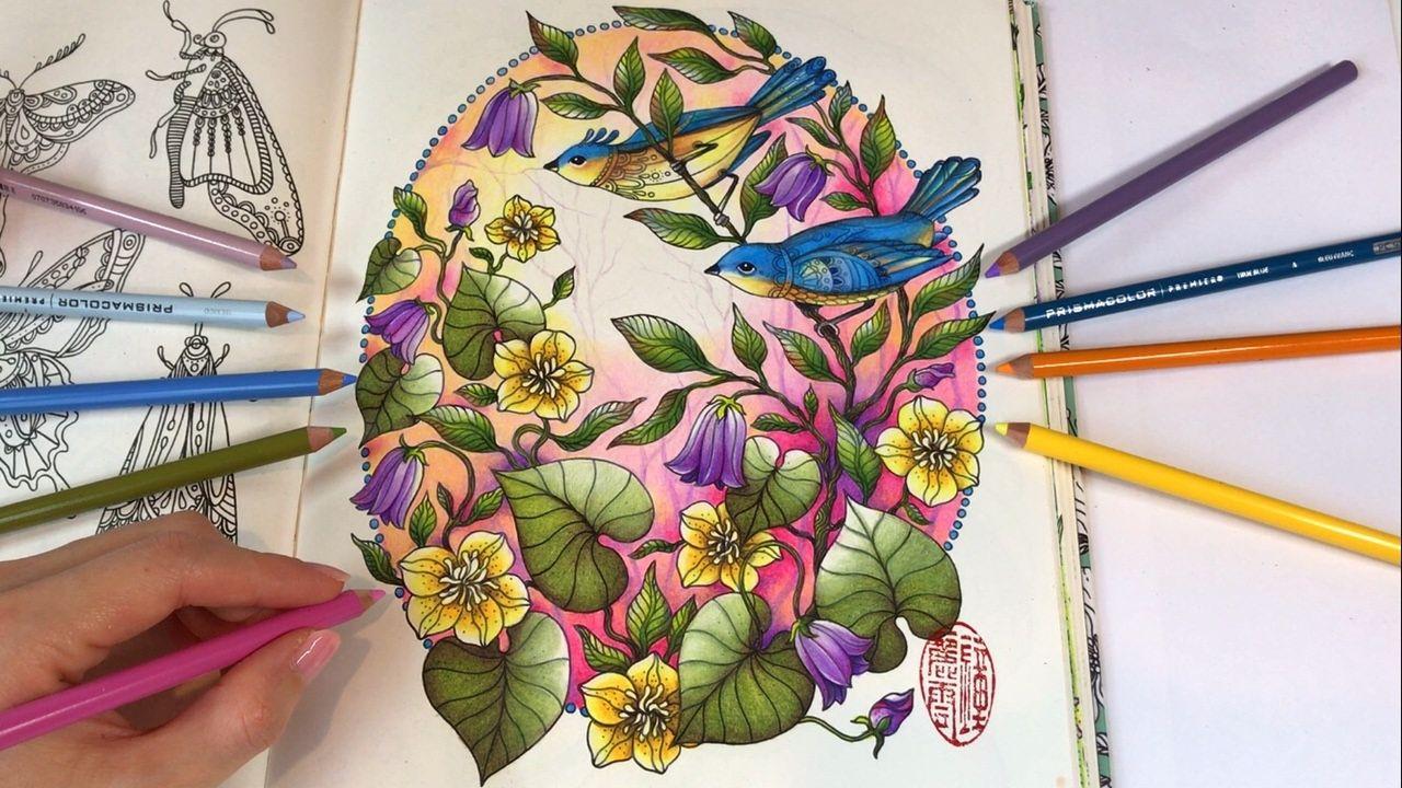 Daydreams Dagdrommar Coloring Book By Hanna Karlzon Kleurboek Kleurenpalet Kleuren