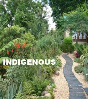 Landscape garden types indigenous cape town gardening for Small garden designs south africa
