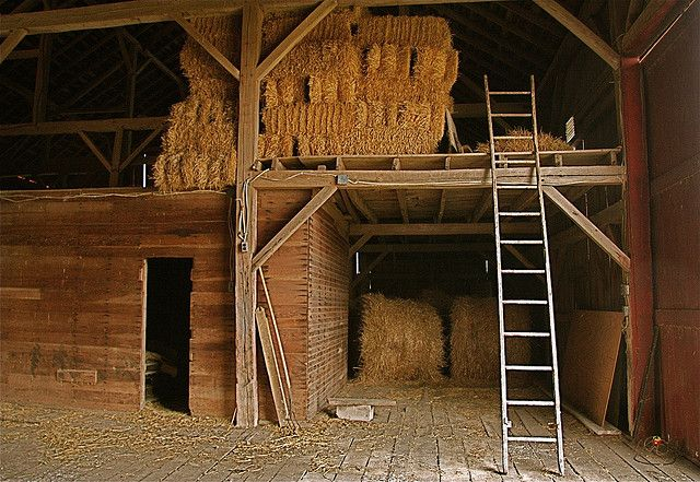 Barn Interior The immigrant Barns and