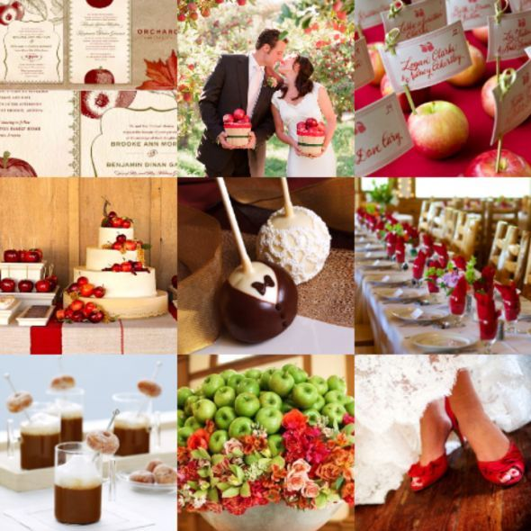My wedding theme color clash weddingbee pommes pinterest all things bridal apple orchard wedding junglespirit