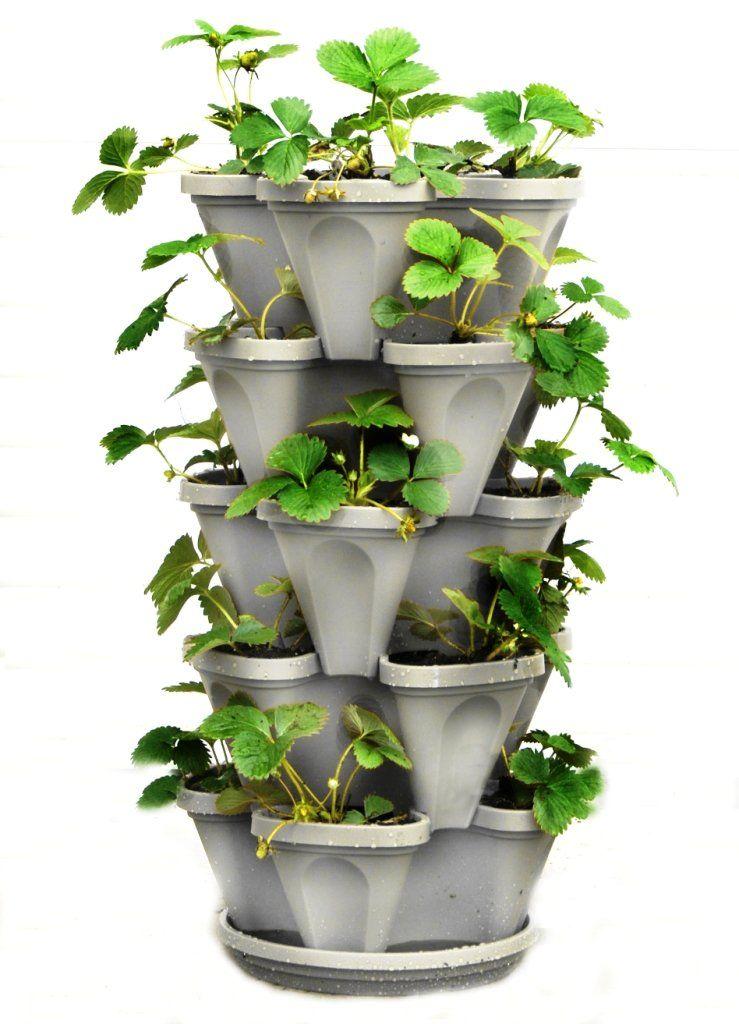 5 Tier Stackable Strawberry, Herb, Flower, And Vegetable Planter   Vertical  Garden Indoor