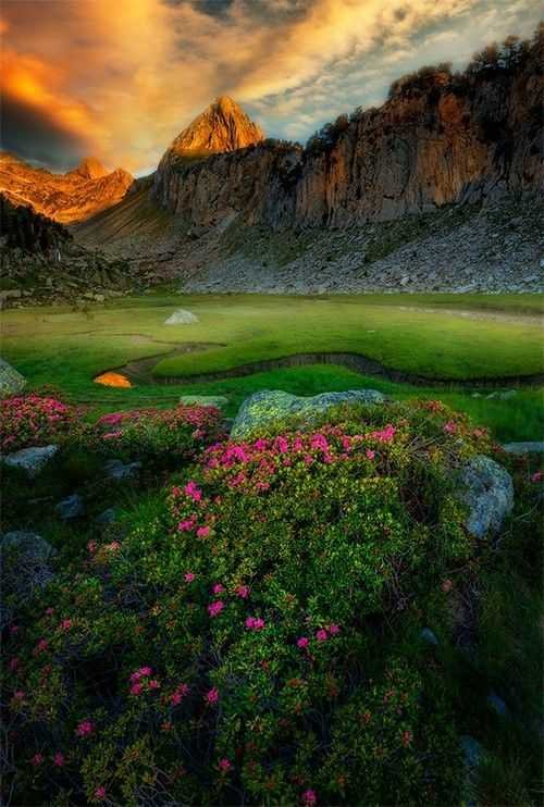 The Pyrenees Europe By David Martan Casta N Nature Beautiful Nature Scenery
