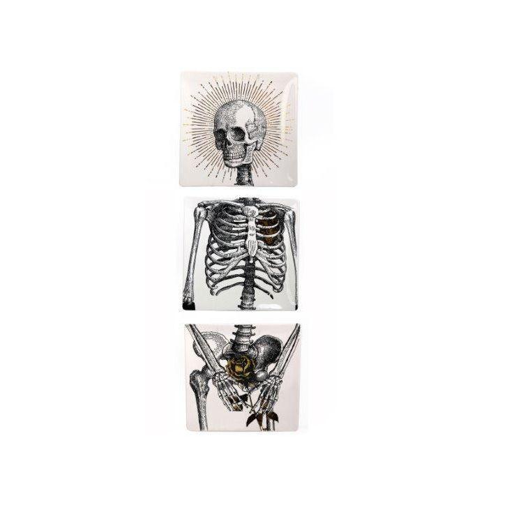 Trio assiettes decoratives Squelette | Home inspiration ...