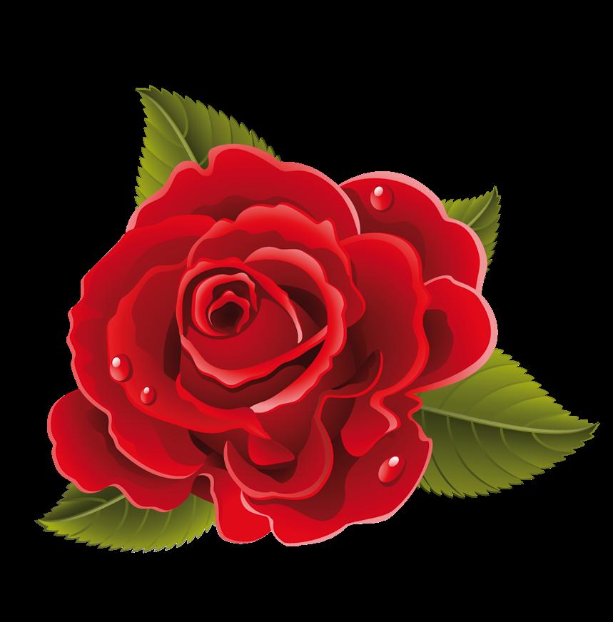 Como La Miel De Abejas Mil Flores Esta Vez Algunas Flores De Buen Tamano Y En Formato Png Para Que Beautiful Flower Drawings Flower Clipart Flower Painting