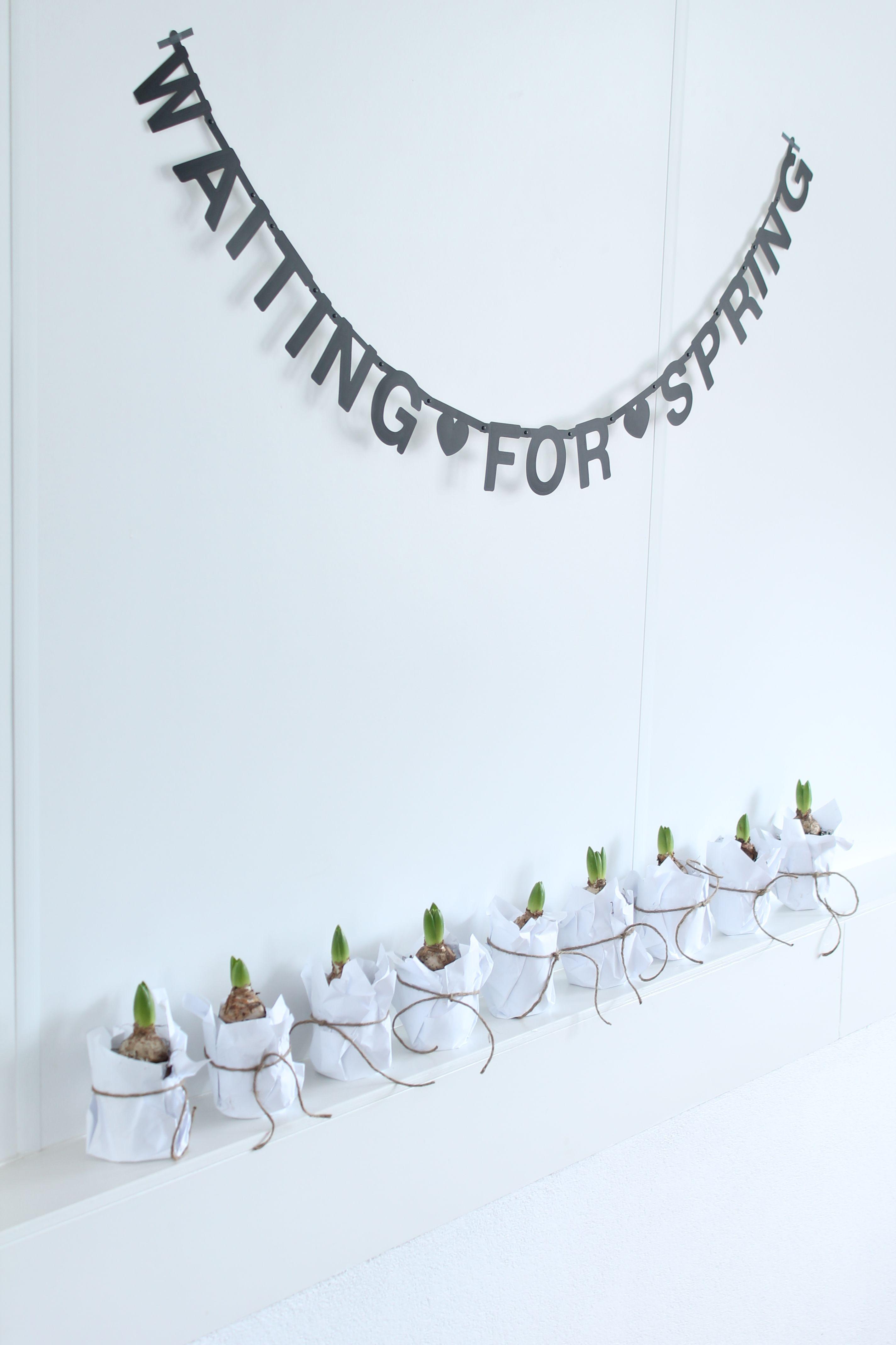 Alvast een beetje lente in huis easter fr hling home - Leuchtkasten deko ...