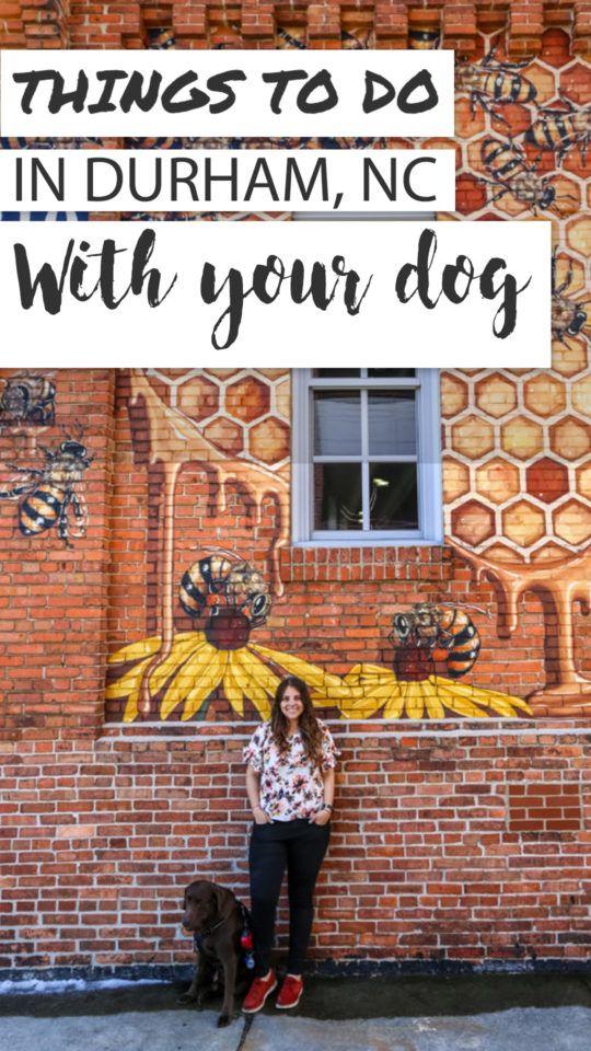A Dog Friendly Visit to Durham, North Carolina North