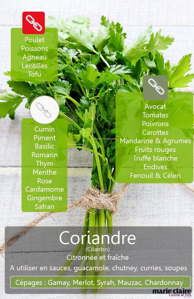 cuisiner avec la coriandre fra che en 2019 plantes aromatiques pices et herbes fines. Black Bedroom Furniture Sets. Home Design Ideas