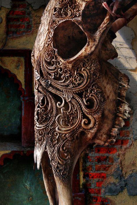 decori scolpiti | skulls | Pinterest | Cabeza de vaca, Anatomía y Vaca