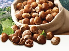 Dove si coltivano le #nocciole migliori? Dove è preferibile acquistarle?