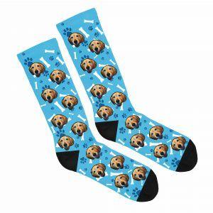 put your dog on socks