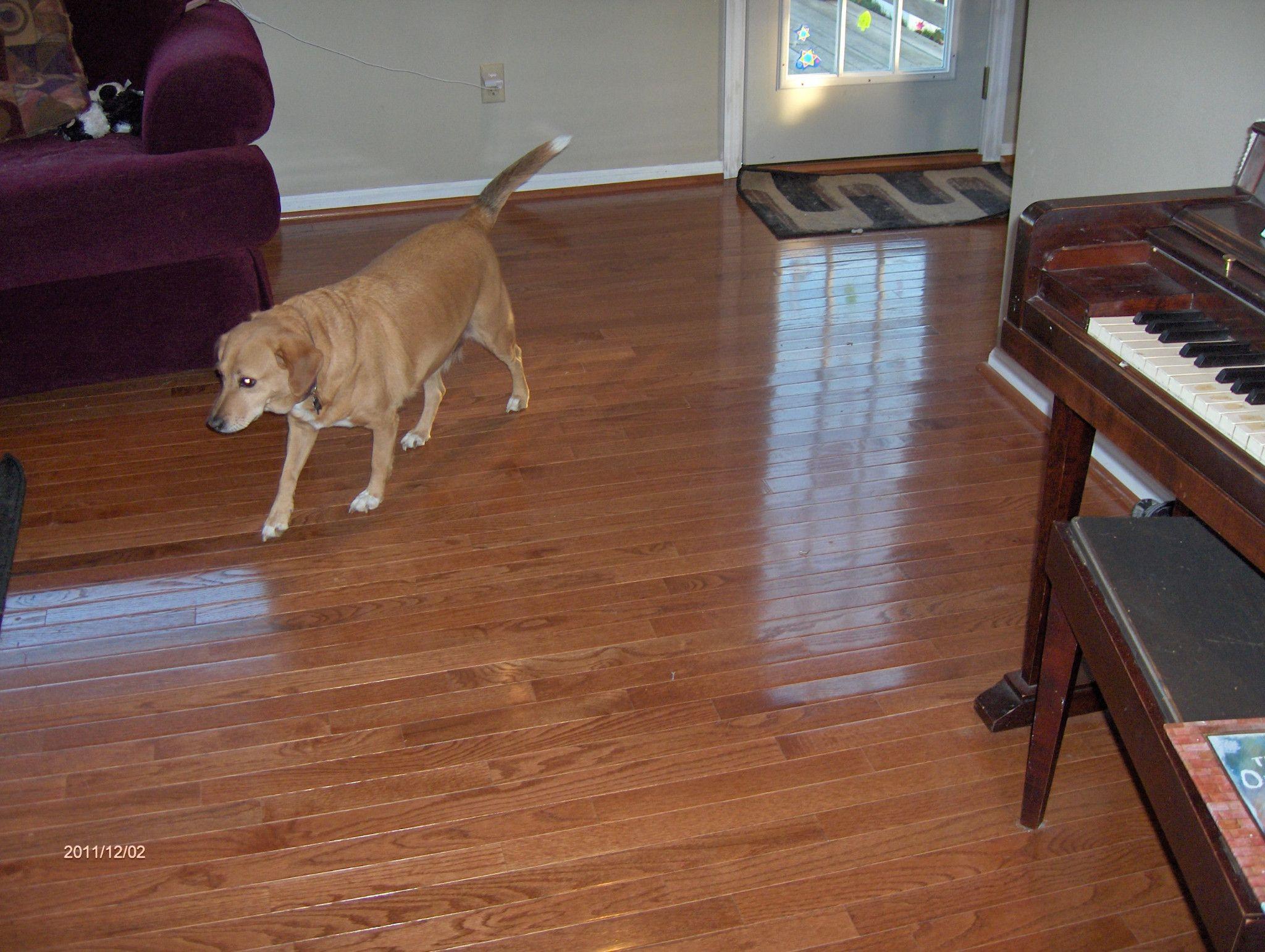 size floating floor bamboo wood hardwood full of bruce laminate flooring design floors