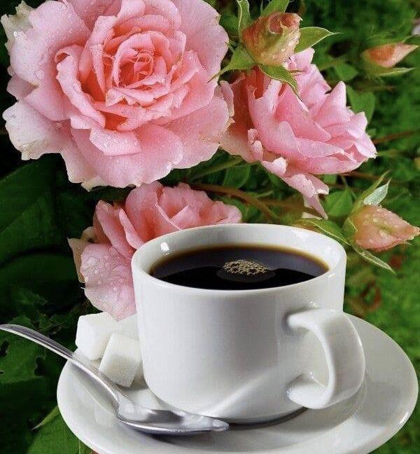 Красивые открытки с кофе и цветы, картинки