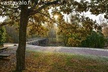 syksyinen-puisto