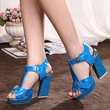 2013 spring and summer new sexy Roman fish head sandals with thick waterproof Taiwan super high heels women shoes hit color from taobao