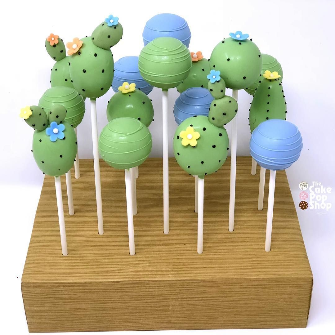Cactus Cake Pops In A Decorated Brpboxshop Stand Cactus By The Cake Pop Shop Cactus Cake Succulent Cake Baby Shower Cake Pops