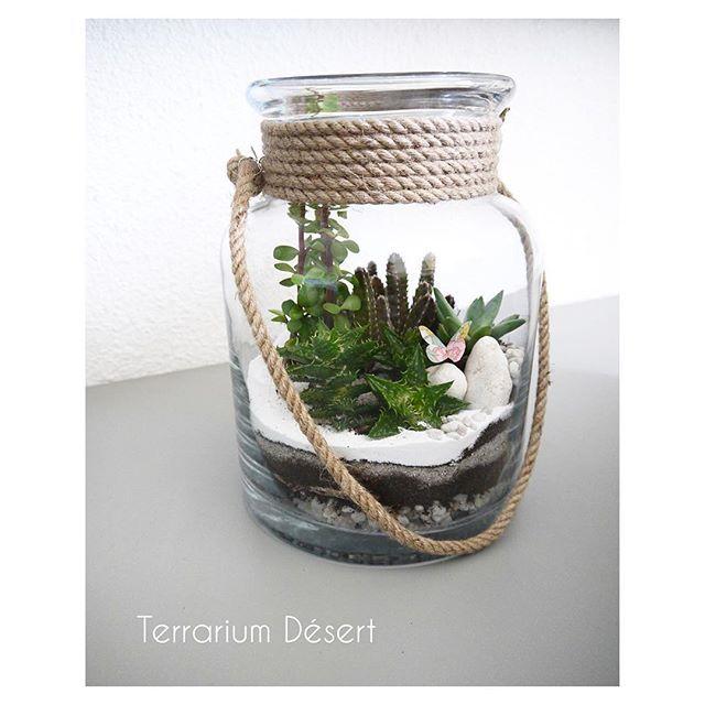 Notre Version Desert Terrariumanddiy Kitterrarium