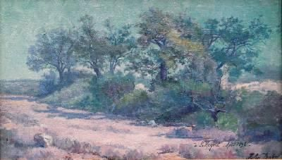 """LANDSCAPE IN PROVENCE BY JULES GASTON DOIN (FRENCH - ACTIVE 1870-1925) CIRCA DATA:1894 DIMENSIONS:8.5 (17 framed)"""" h x 13.75 (22.25 framed)"""" w PRICE:$3,900"""