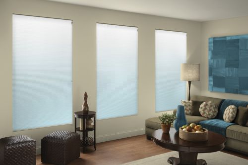 Ombre Cell Shades Kid Pet Friendly Window Treatments Honeycomb Shades Cell Shade Window Treatments