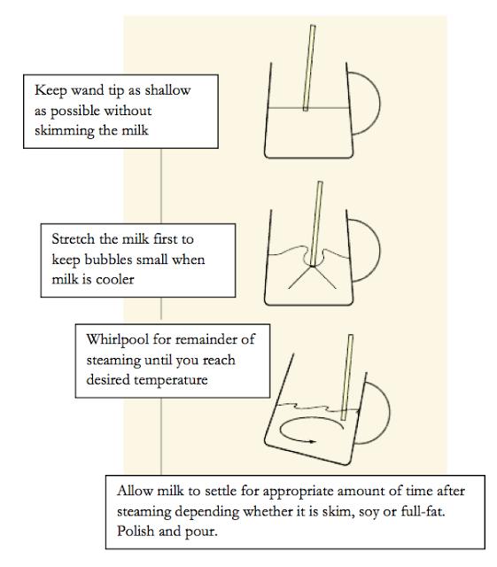 starbucks coffee and tea resource manual pdf