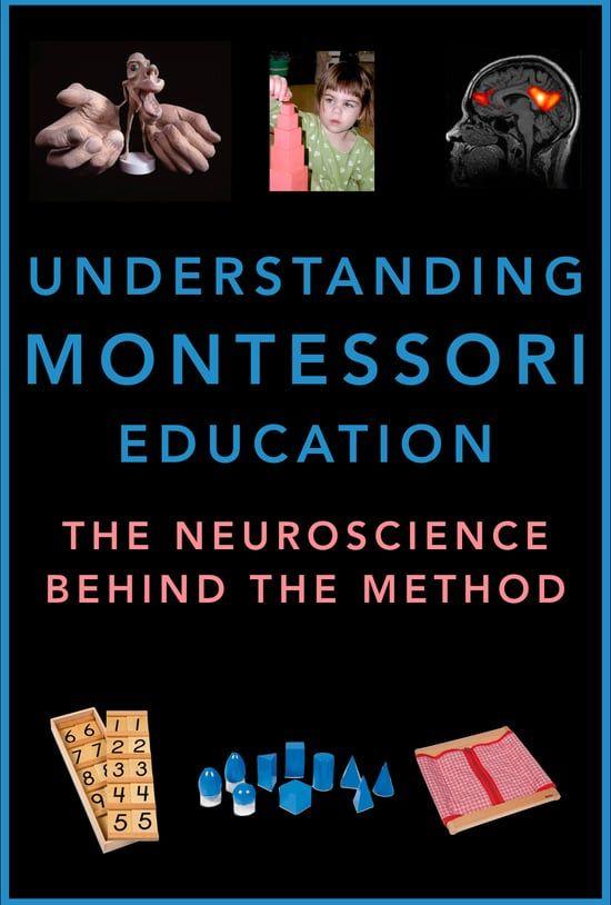 Watch Montessori Education Explained by Pediatric Neuropsychologist ...