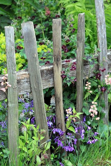 I Love Flowers Planted By Old Rustic Things Like This Wood Fence