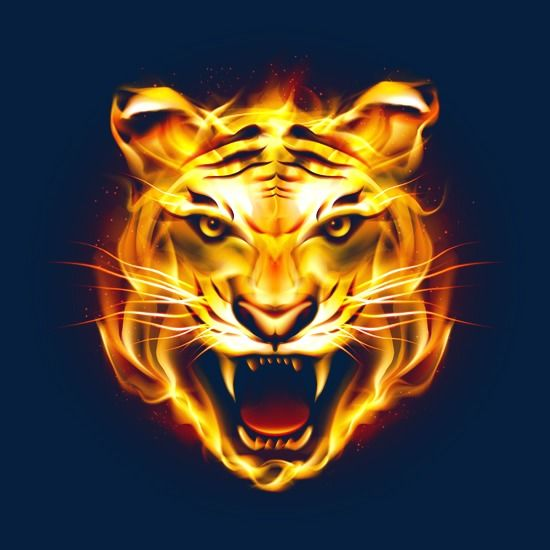 Image Result For Lion Tattoo Png Hd