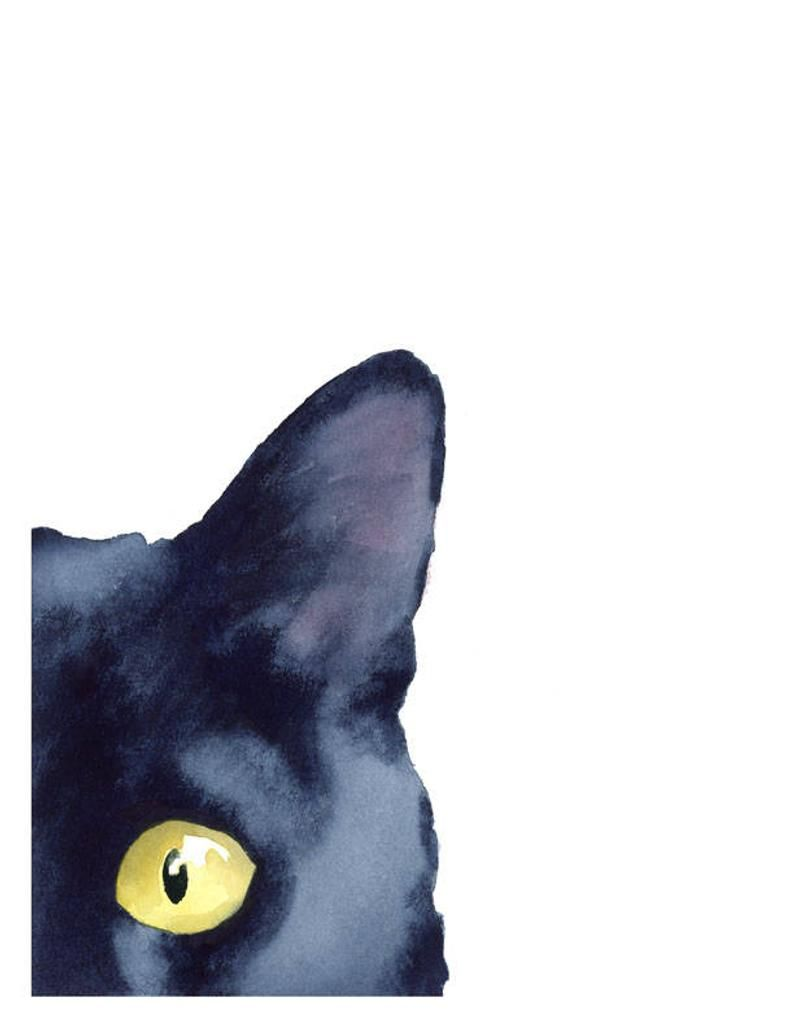 Katze Schwarze Katze Kunstdruck Hinterhaltige Schwarze Katze
