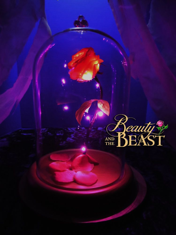 Beauty and the beast rose enchanted disney gift birthday ... Beauty And The Beast Rose