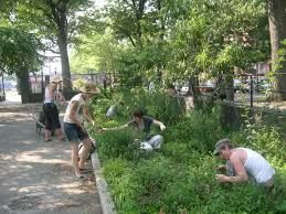 """consulting more """"permaculture design class"""" infos click link: http://www.facebook.com/permaculture.design"""