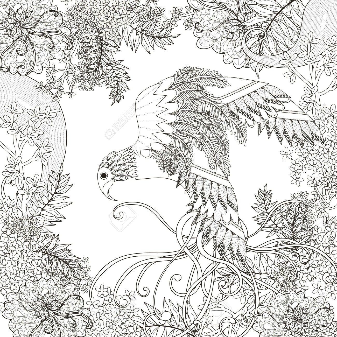 Pin de Beth Conroy en COLOR-BIRDS | Pinterest