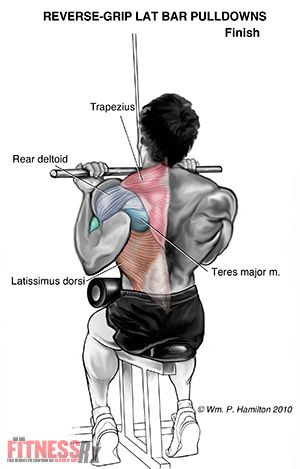 Growing  back wings with reverse grip pulldowns also fitness and rh pinterest