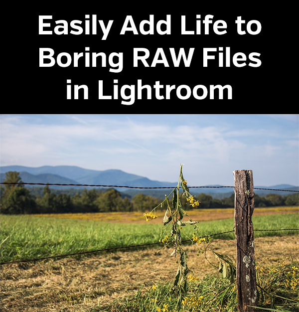 Raw files in lightroom