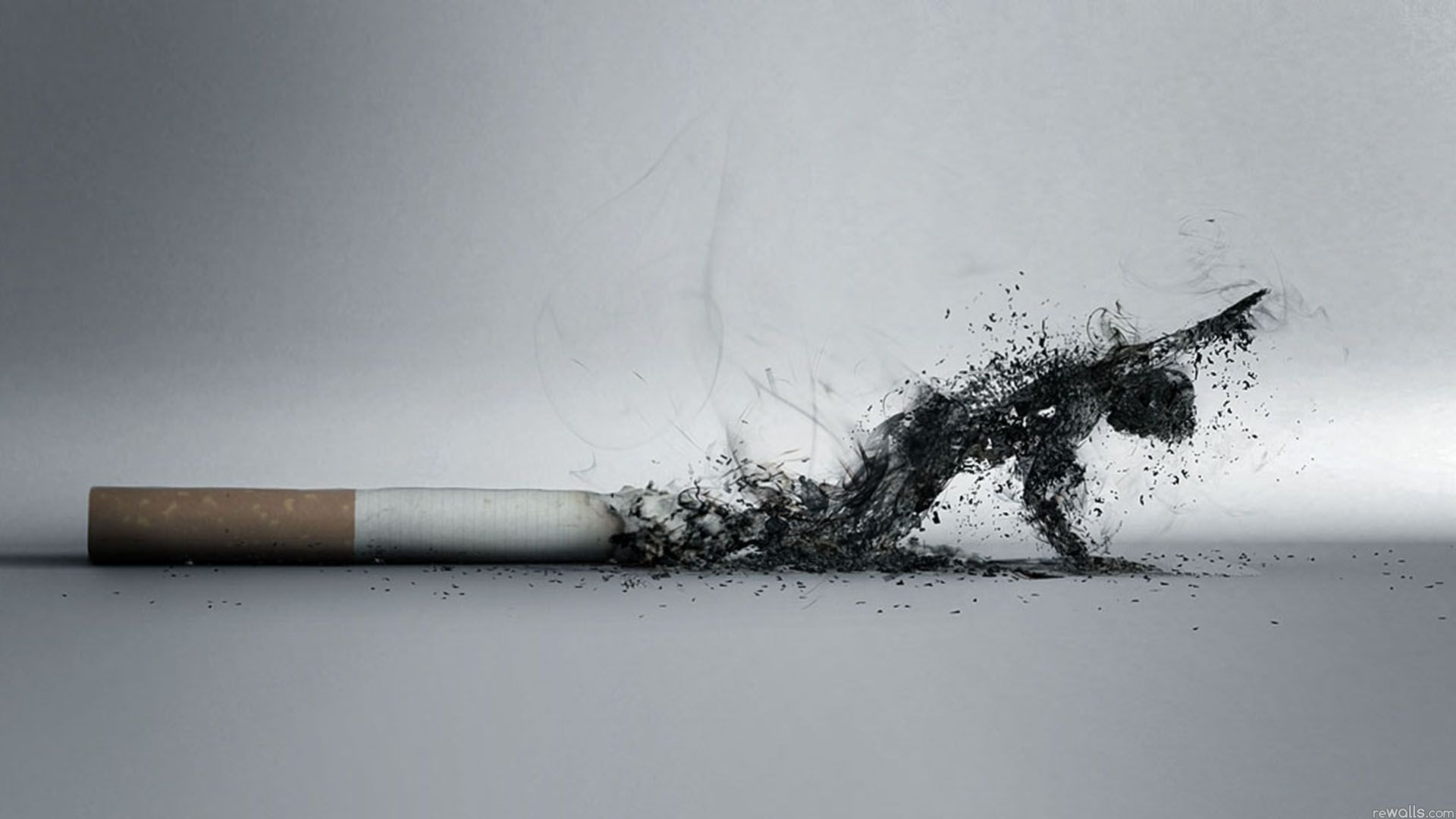 Smoking Kills Half a Million Americans a Year - Partnership for ...